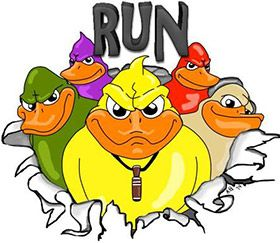 Run From the Ducks