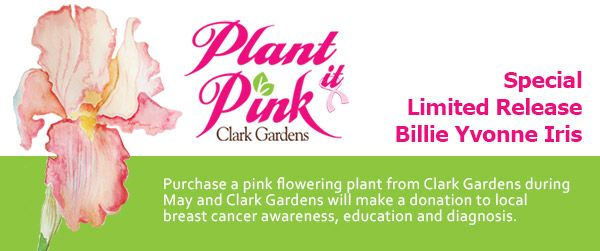Plant it Pink