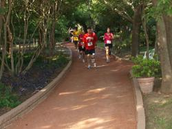 half marathon and 5k run/walk at Clark Gardens