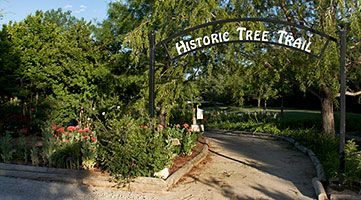 Historic Tree Trail Entrance